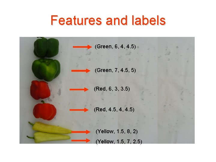 Features and labels (Green, 6, 4, 4. 5) (Green, 7, 4. 5, 5) (Red,