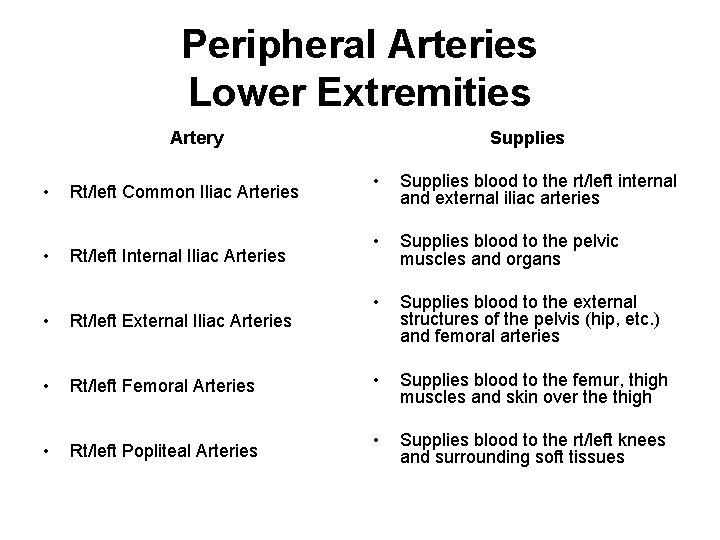 Peripheral Arteries Lower Extremities Artery • • Rt/left Common Iliac Arteries Rt/left Internal Iliac
