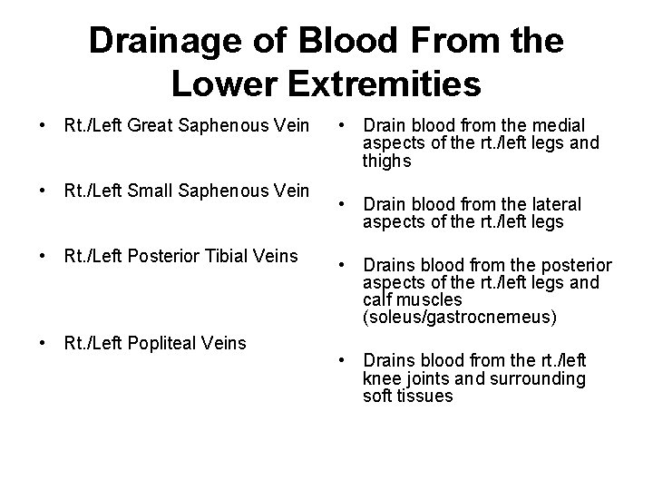 Drainage of Blood From the Lower Extremities • Rt. /Left Great Saphenous Vein •