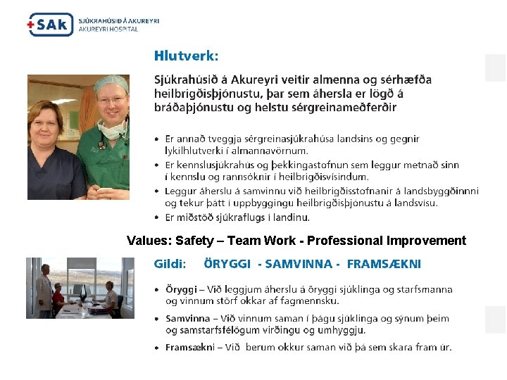 Values: Safety – Team Work - Professional Improvement