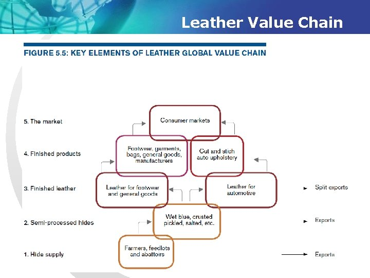 Leather Value Chain