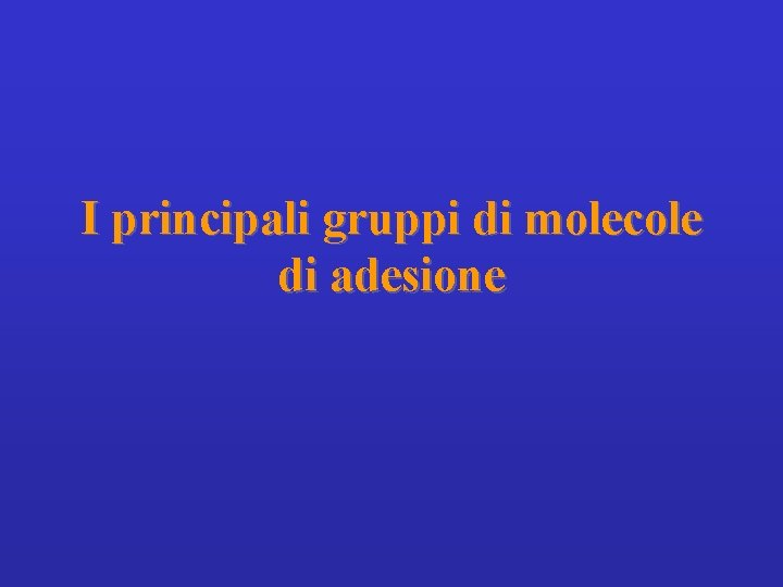 I principali gruppi di molecole di adesione