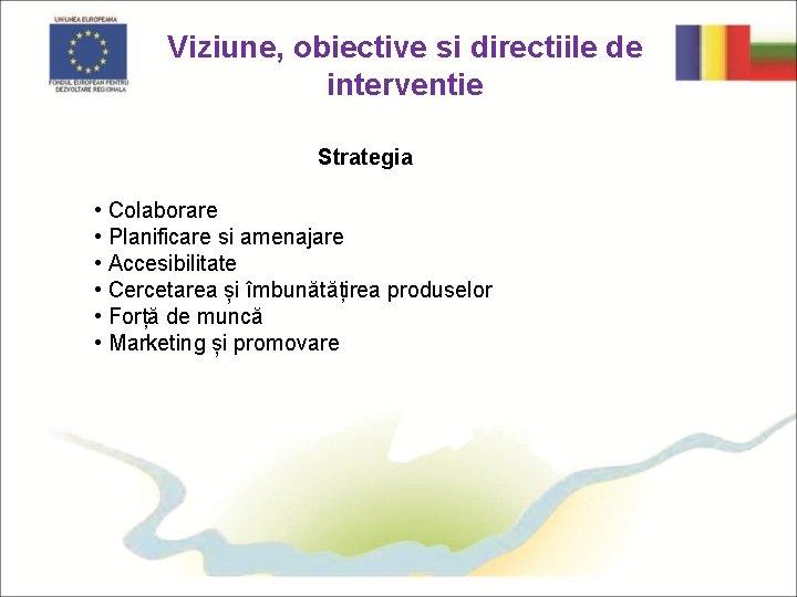 principalele direcții de viziune