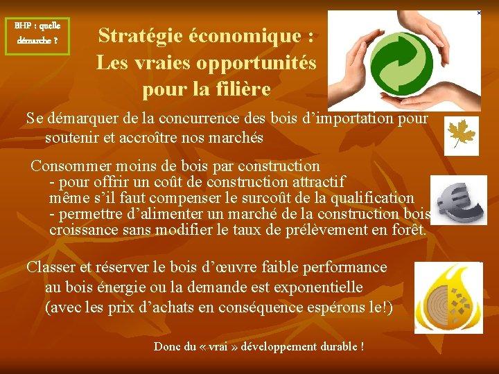 BHP : quelle démarche ? Stratégie économique : Les vraies opportunités pour la filière