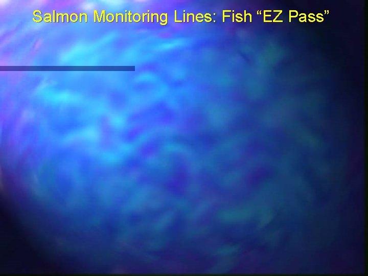 "Salmon Monitoring Lines: Fish ""EZ Pass"""