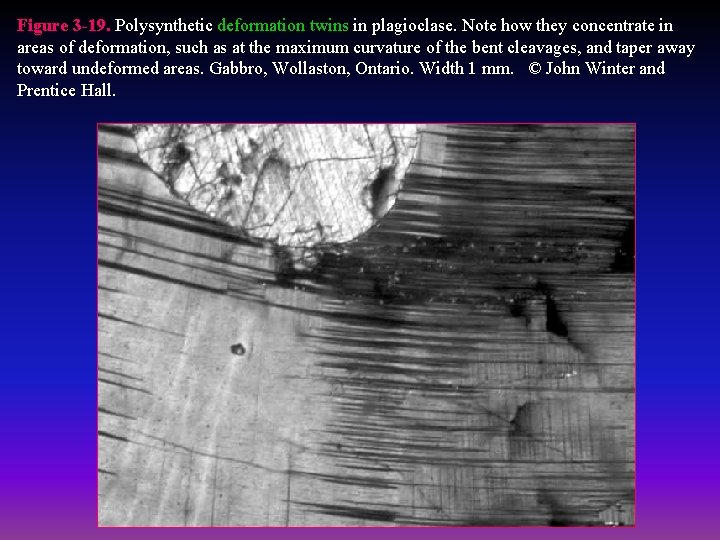 Figure 3 -19. Polysynthetic deformation twins in plagioclase. Note how they concentrate in areas