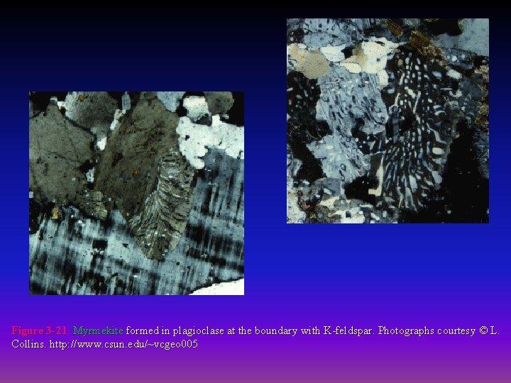 Figure 3 -21. Myrmekite formed in plagioclase at the boundary with K-feldspar. Photographs courtesy