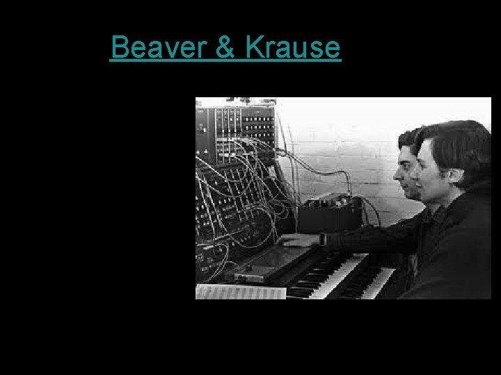 Beaver & Krause