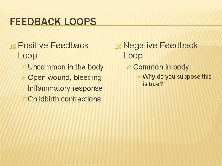 FEEDBACK LOOPS Positive Feedback Loop Uncommon in the body Open wound, bleeding Inflammatory response