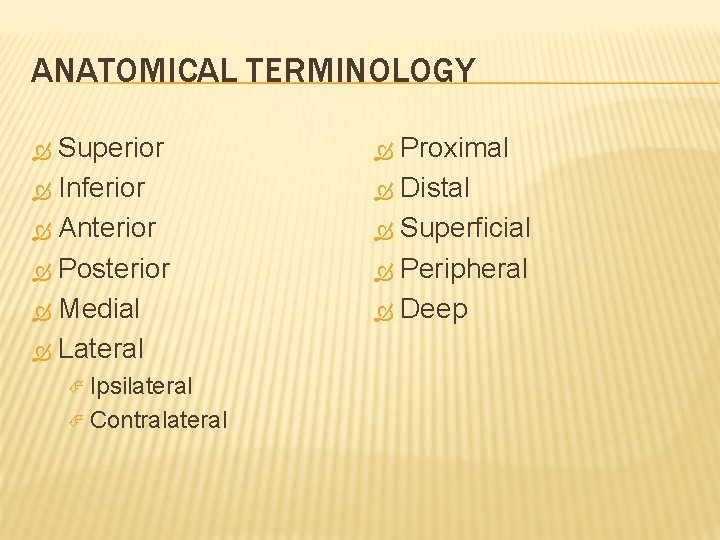 ANATOMICAL TERMINOLOGY Superior Inferior Anterior Posterior Medial Lateral Ipsilateral Contralateral Proximal Distal Superficial Peripheral