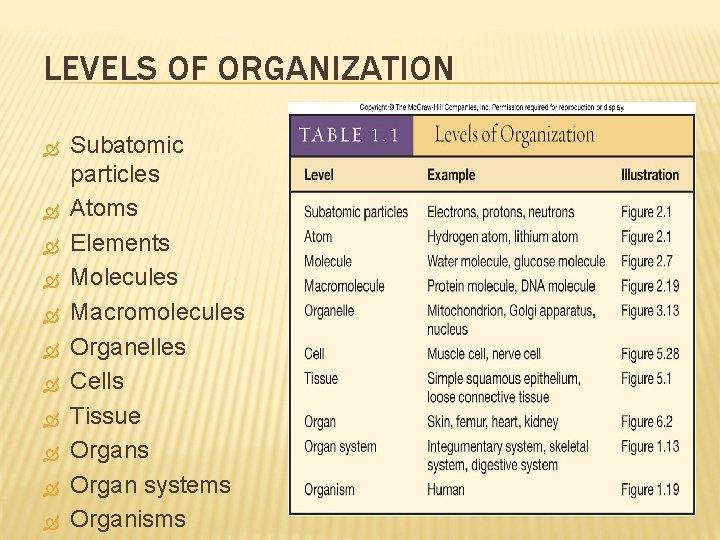 LEVELS OF ORGANIZATION Subatomic particles Atoms Elements Molecules Macromolecules Organelles Cells Tissue Organs Organ