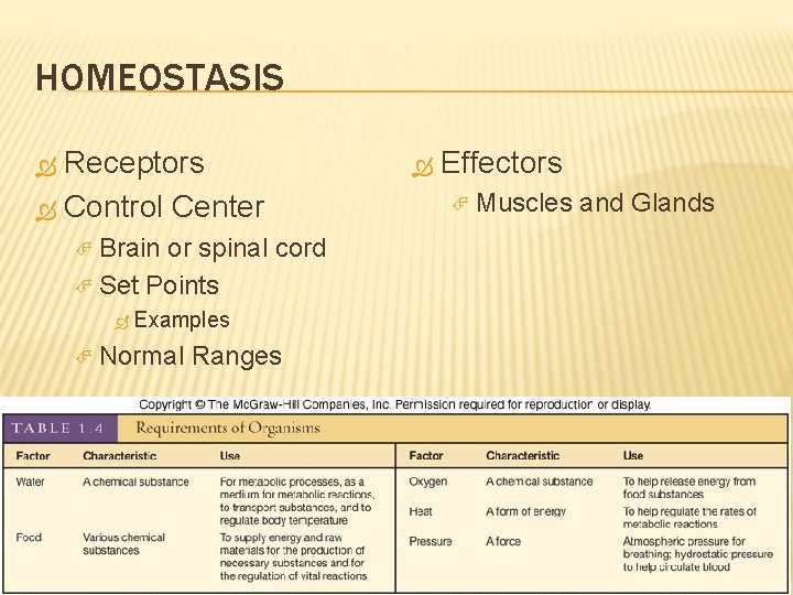 HOMEOSTASIS Receptors Control Center Brain or spinal cord Set Points Examples Normal Ranges Effectors