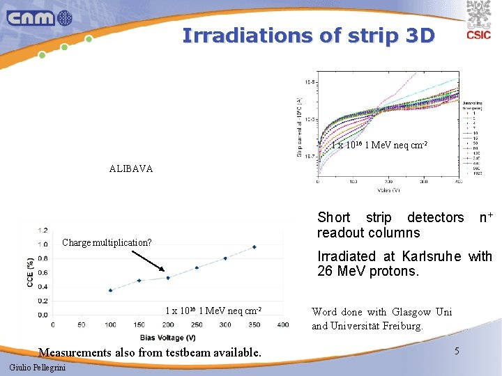 Irradiations of strip 3 D 1 x 1016 1 Me. V neq cm-2 ALIBAVA