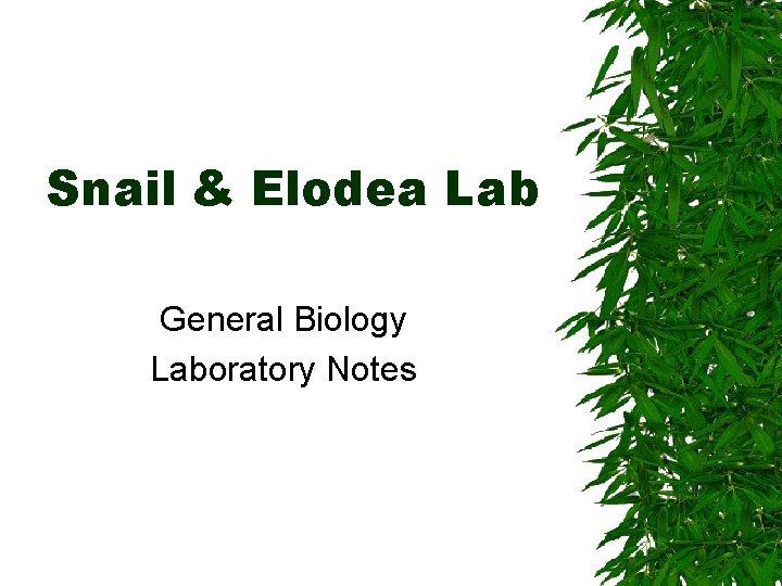 Snail & Elodea Lab General Biology Laboratory Notes