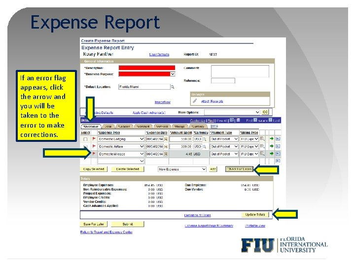 Expense Report If an error flag appears, click the arrow and you will be