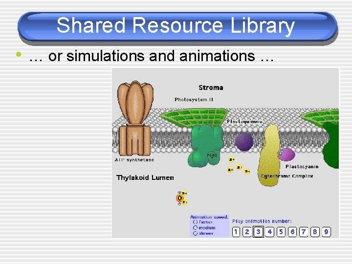 Shared Resource Library • … or simulations and animations …