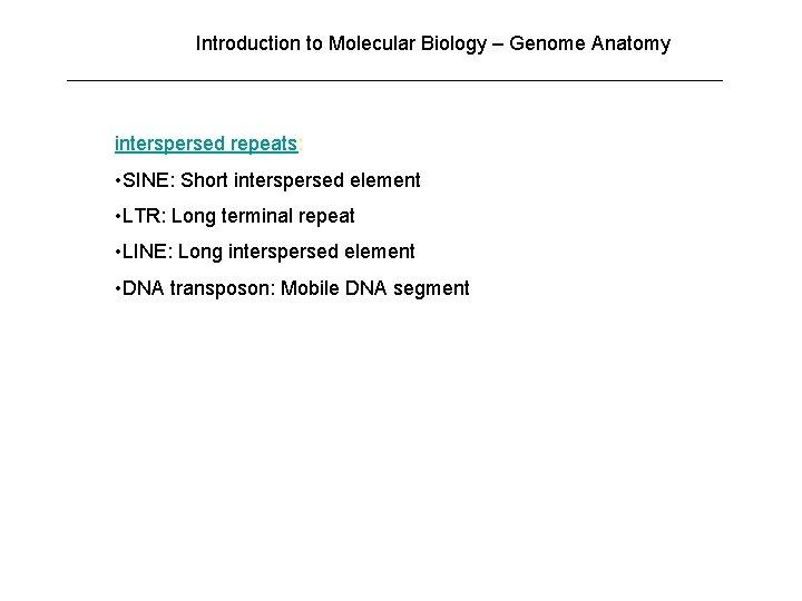 Introduction to Molecular Biology – Genome Anatomy interspersed repeats: • SINE: Short interspersed element