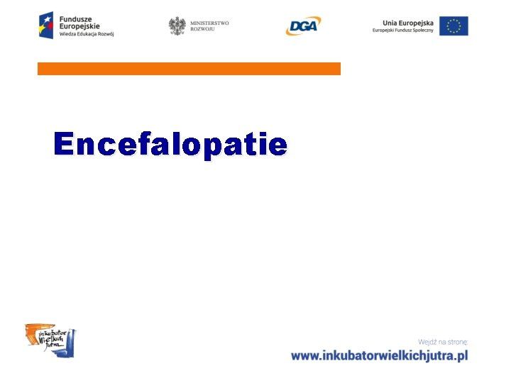 Encefalopatie