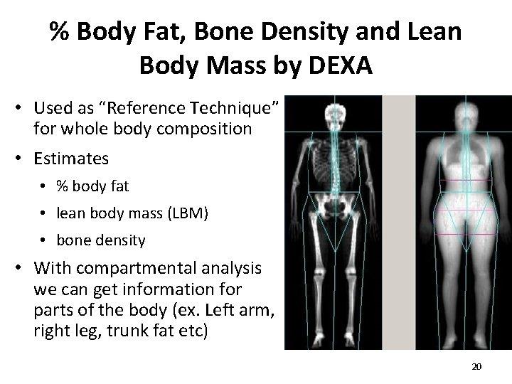 % Body Fat, Bone Density and Lean Body Mass by DEXA • Used as