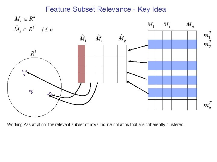 Feature Subset Relevance - Key Idea Working Assumption: the relevant subset of rows induce