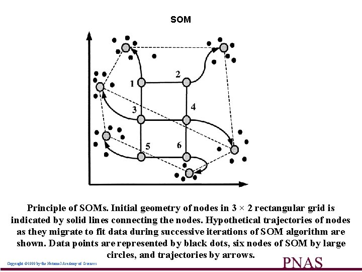 SOM Principle of SOMs. Initial geometry of nodes in 3 × 2 rectangular grid