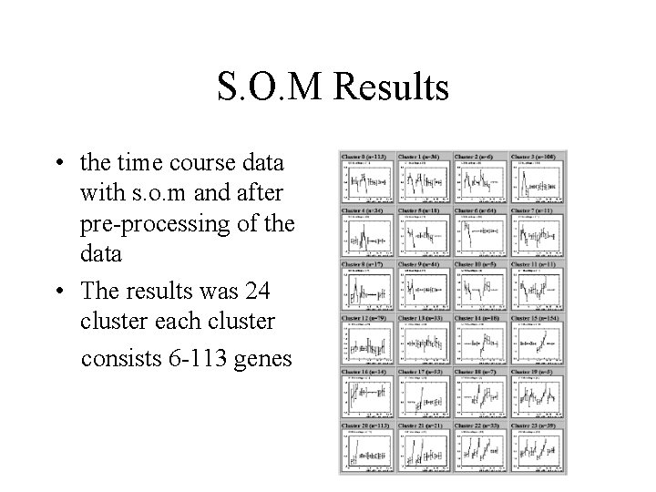 S. O. M Results • the time course data with s. o. m and