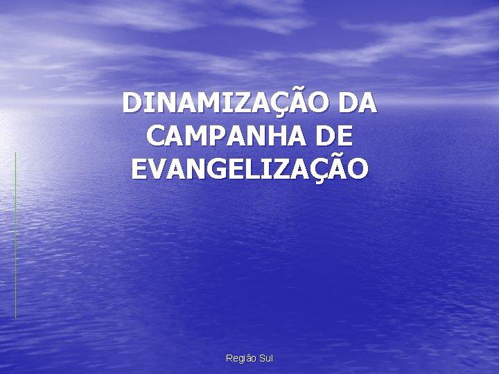 DINAMIZAÇÃO DA CAMPANHA DE EVANGELIZAÇÃO Região Sul