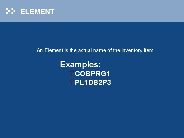 ELEMENT An Element is the actual name of the inventory item. Examples: Ÿ COBPRG