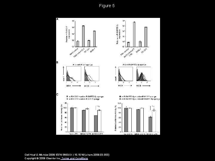 Figure 5 Cell Host & Microbe 2009 5376 -385 DOI: (10. 1016/j. chom. 2009.