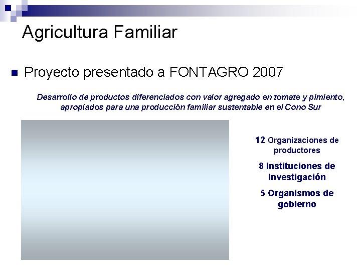 Agricultura Familiar n Proyecto presentado a FONTAGRO 2007 Desarrollo de productos diferenciados con valor