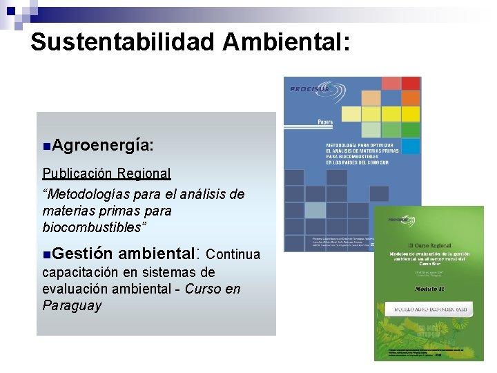 """Sustentabilidad Ambiental: n. Agroenergía: Publicación Regional """"Metodologías para el análisis de materias primas para"""