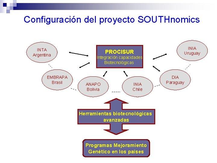 Configuración del proyecto SOUTHnomics INTA Argentina EMBRAPA Brasil INIA Uruguay PROCISUR Integración capacidades Biotecnológicas