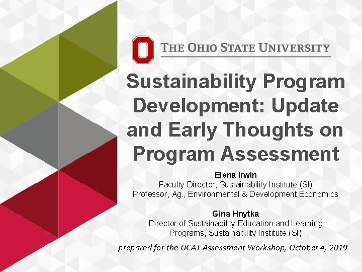 Sustainability Program Development: Update and Early Thoughts on Program Assessment Elena Irwin Faculty Director,