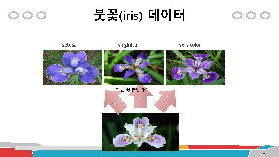 붓꽃(iris) 데이터 virginica versicolor 어떤 종류인가? ? setosa 111