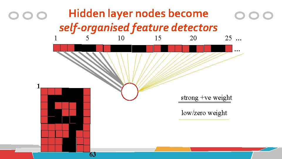1 Hidden layer nodes become self-organised feature detectors 5 10 15 20 25 …