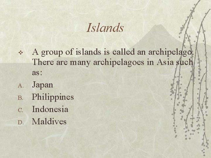 Islands v A. B. C. D. A group of islands is called an archipelago.