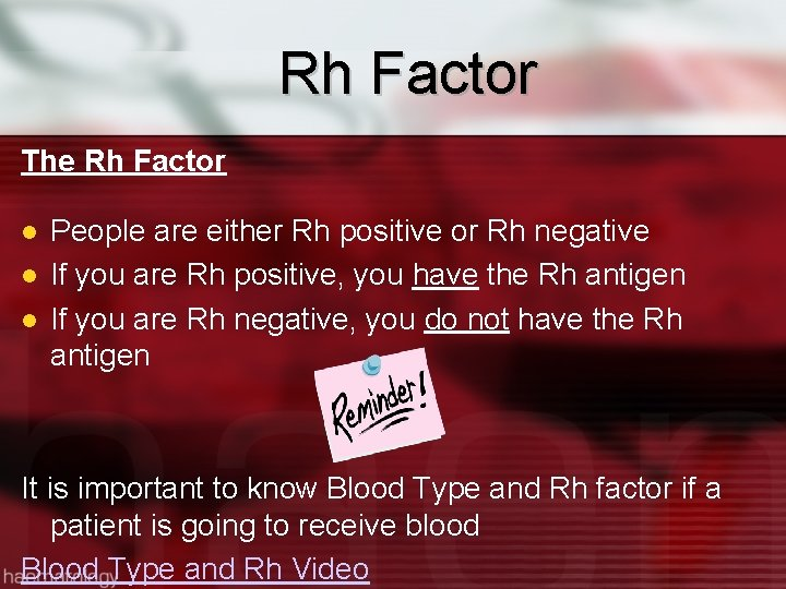 Rh Factor The Rh Factor People are either Rh positive or Rh negative If