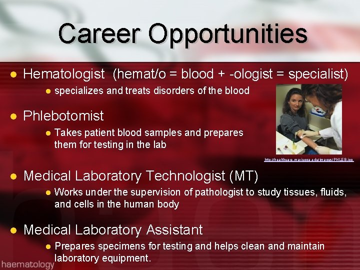 Career Opportunities Hematologist (hemat/o = blood + -ologist = specialist) specializes and treats disorders