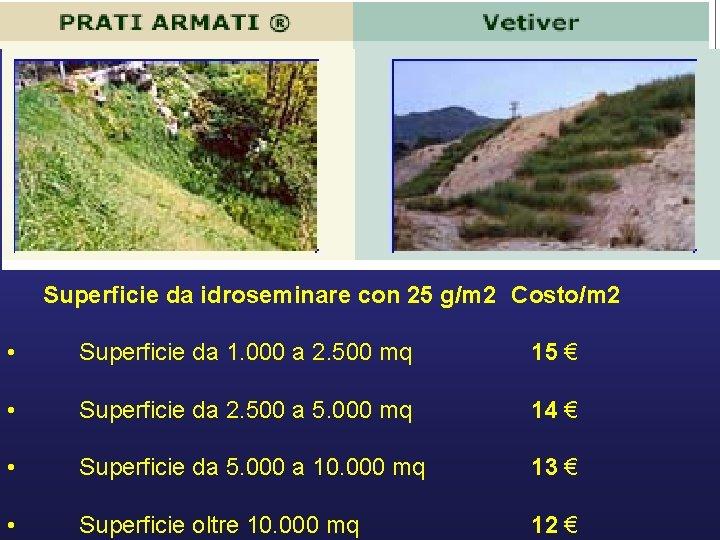 Superficie da idroseminare con 25 g/m 2 Costo/m 2 • Superficie da 1. 000