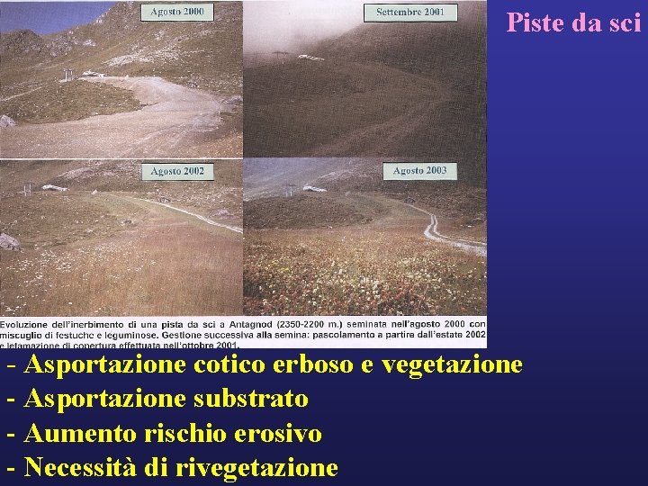 Piste da sci - Asportazione cotico erboso e vegetazione - Asportazione substrato - Aumento
