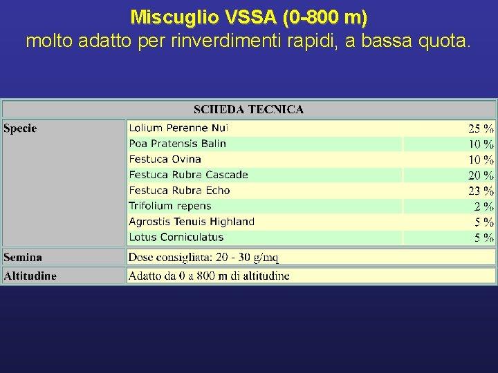 Miscuglio VSSA (0 -800 m) molto adatto per rinverdimenti rapidi, a bassa quota.