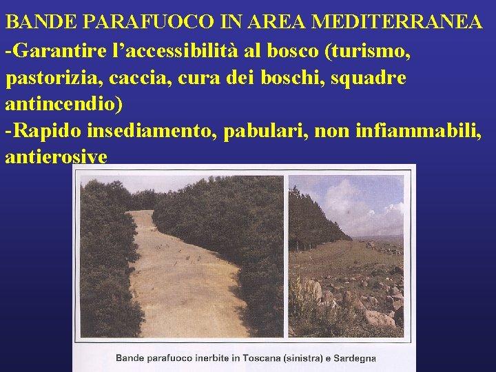 BANDE PARAFUOCO IN AREA MEDITERRANEA -Garantire l'accessibilità al bosco (turismo, pastorizia, caccia, cura dei