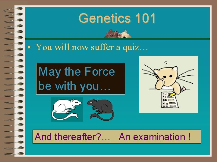 Genetics 101 • You will now suffer a quiz… May the Force be with