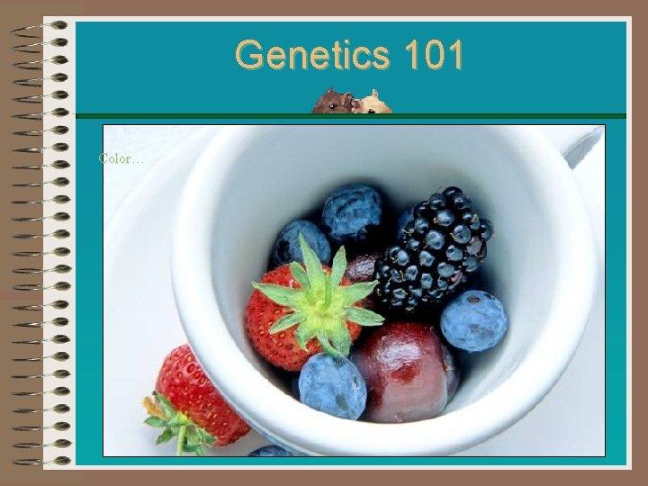 Genetics 101 Color…