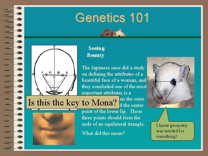 Genetics 101 Seeing Beauty The Japanese once did a study on defining the attributes