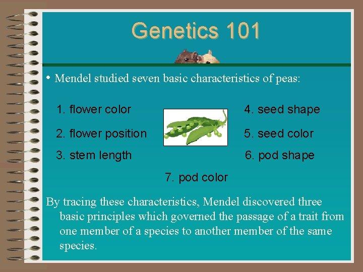 Genetics 101 • Mendel studied seven basic characteristics of peas: 1. flower color 4.