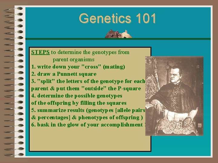 Genetics 101 STEPS to determine the genotypes from parent organisms 1. write down your