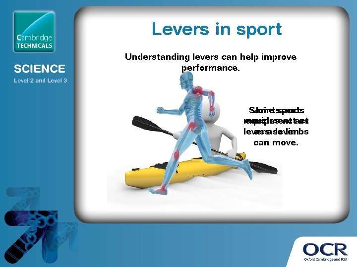 Levers in sport Understanding levers can help improve performance. Some Jointssports and muscles equipment
