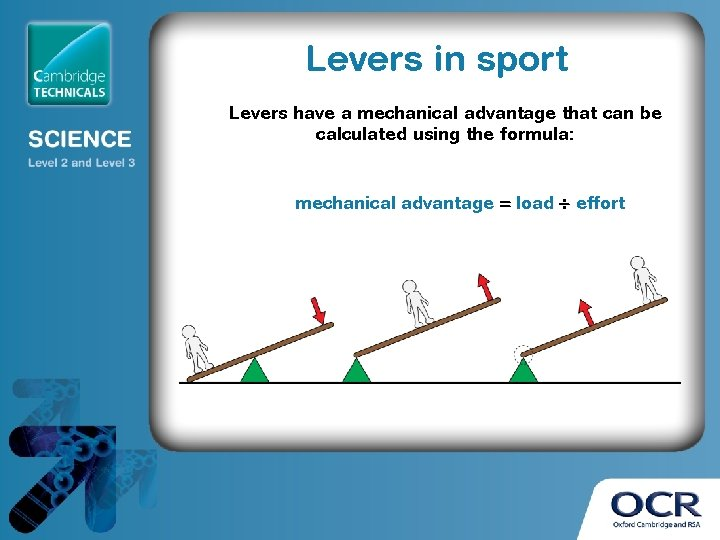 Levers in sport Levers have a mechanical advantage that can be calculated using the