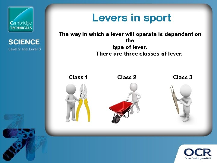 Levers in sport The way in which a lever will operate is dependent on